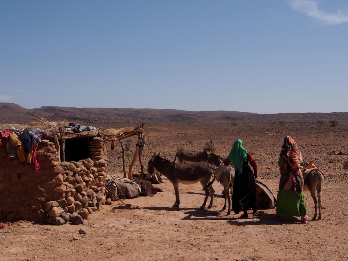 Frauen bepacken die Esel