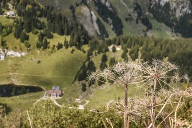 Auf dem Höhenweg Richtung Staubern